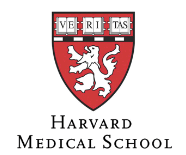 Dr. Nelson Astur Neto - Certificado Harvard Medical School