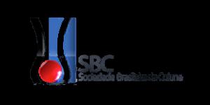Dr. Nelson Astur Neto - Certificado SBC